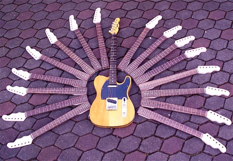 Gitarrenbaukurs bei Reußenzehn